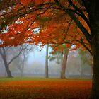 Autumn's Blanket by Barbara  Brown