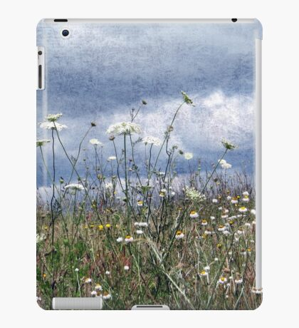 Summertime in the North West iPad Case/Skin