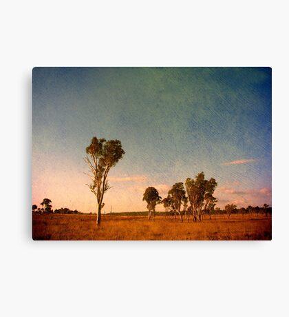 Australiana Canvas Print