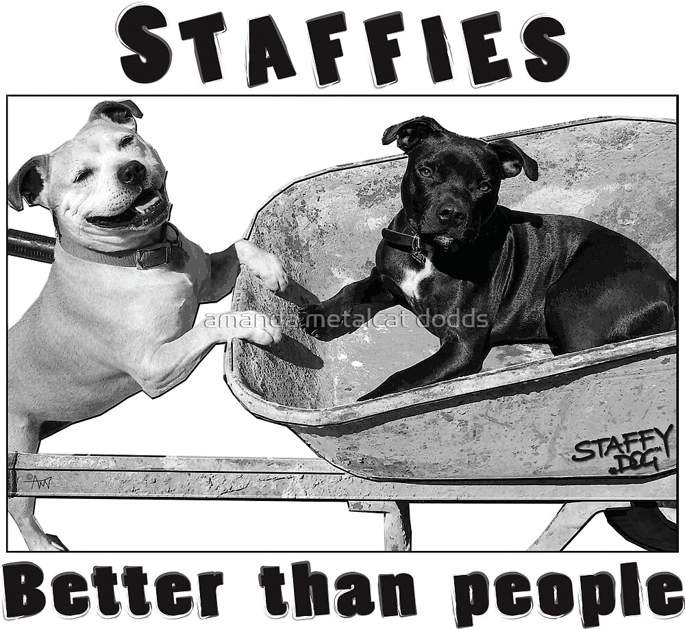 Staffies Better than people by amanda metalcat dodds