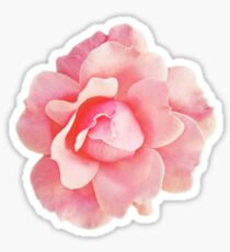 Little Pink Flower Sticker