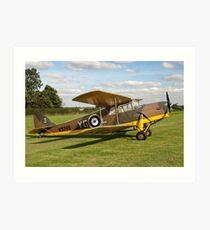 DH.87B Hornet Moth W9385/YG-3 G-ADND Art Print