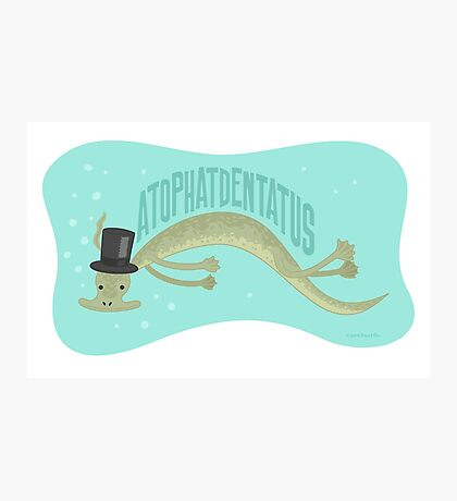 A-top-hat-dentatus Photographic Print