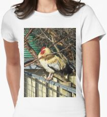 White And Fawn Fluffy Rooster Sleeping On A Fence T-Shirt