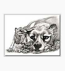 ICON ~ D1G1TAL-M00DZ ~ Thylacine Mother and Young 2 by tasmanianartist Photographic Print