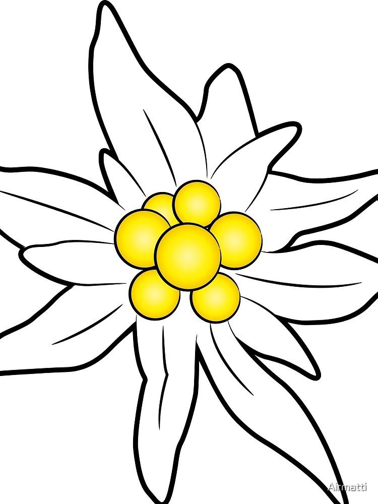 Edelweiss flower by Airmatti