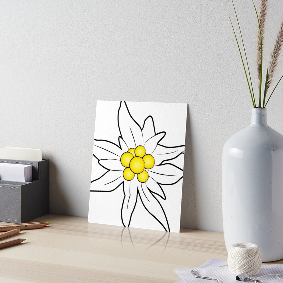 Edelweiss flower Art Board Print