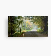 Lower River Road in Autumn Metal Print