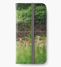 Through the Fence iPhone Wallet/Case/Skin