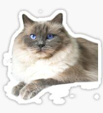 Stoffpuppe Katze Sticker