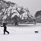 A walk in the snow by Matt Mawson