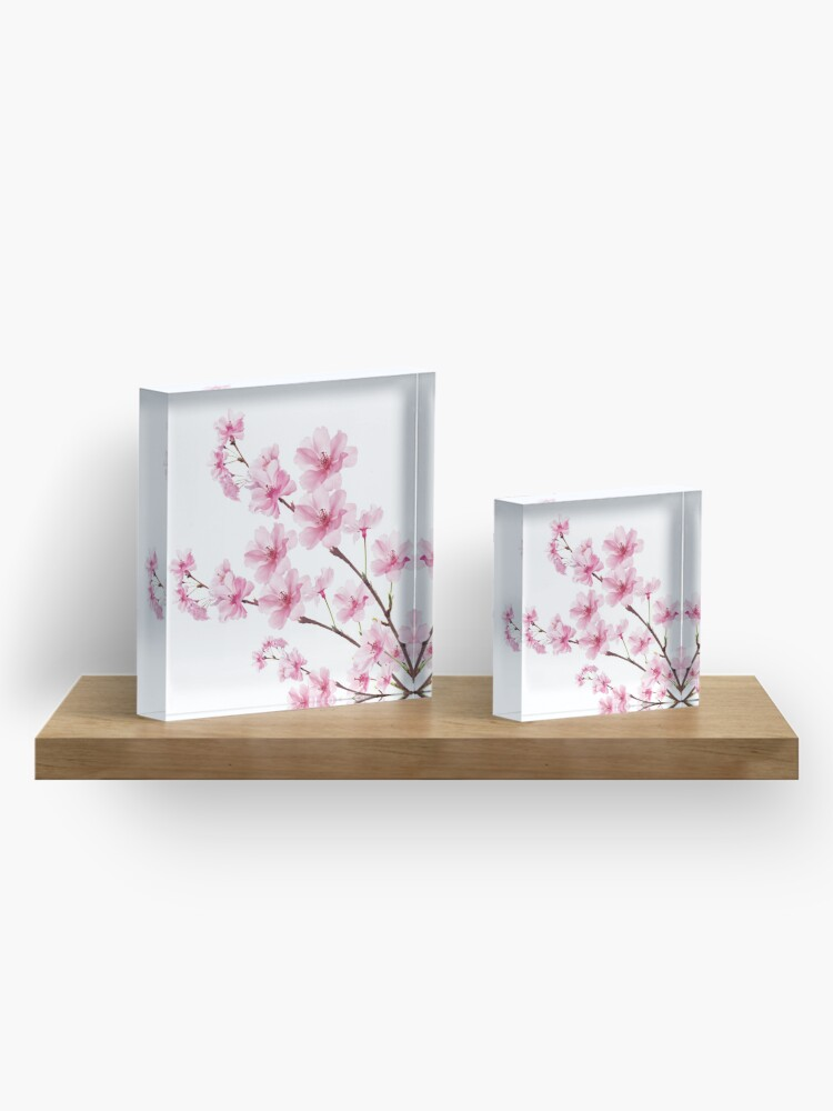 Alternate view of Sakura Cherry Blossom Acrylic Block