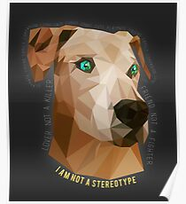 Pit Bulls - Not A Stereotype  Poster