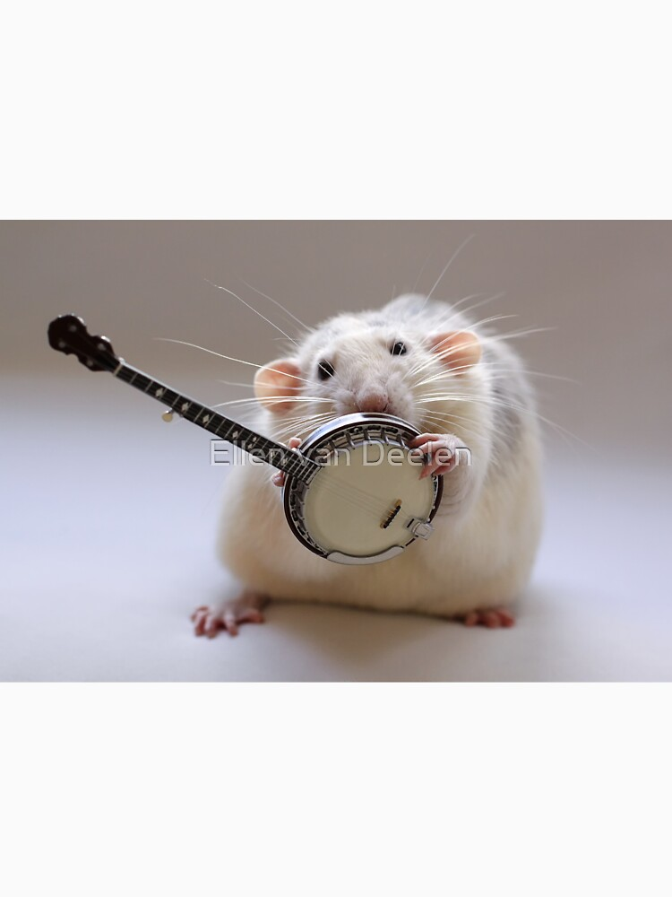My banjo. by Ellen