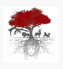 Three-eyed raven tree Photographic Print