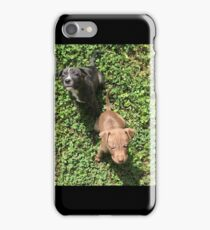 Puppies iPhone Case/Skin