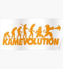 KameEvolution Poster