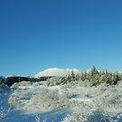 Icelandic Landscape by KR Green