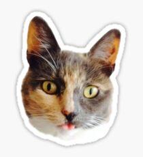 Derp Idol Sticker
