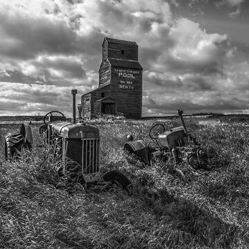Bents Grain Elevator - BW by TheKav