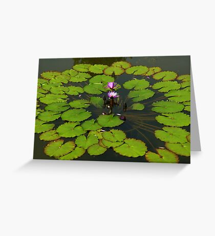 The Water Garden ~  Part Five Greeting Card