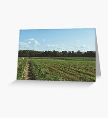 Summers Day Farm Landscape Photograph Greeting Card