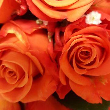 High Res Orange Rose Print by Starkhorse