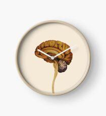 Sagittal Brain Clock
