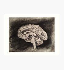 Sagittal (Black and White) Art Print