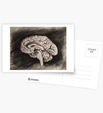 Sagittal (Black and White) Postcards