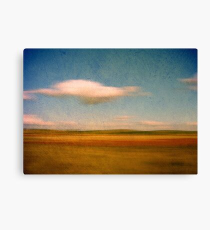 Cloudy Day Canvas Print
