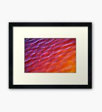 Burgess Bright Framed Print