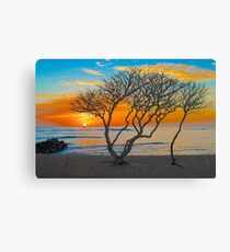 Kapa'a Sunrise Canvas Print