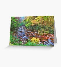 SPRING,W.PRONG LITTLE PIGEON RIVER Greeting Card