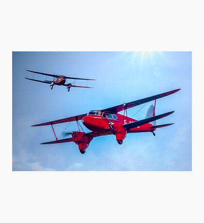The de Havilland DH.90 Dragonfly Photographic Print