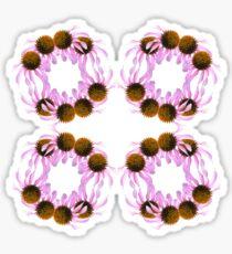 Echinacea flowers Sticker