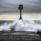 Storm Angus by willgudgeon