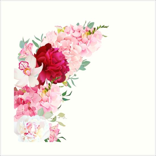 Laminas Artisticas Marco Floral De Lujo Del Vector De La Forma De