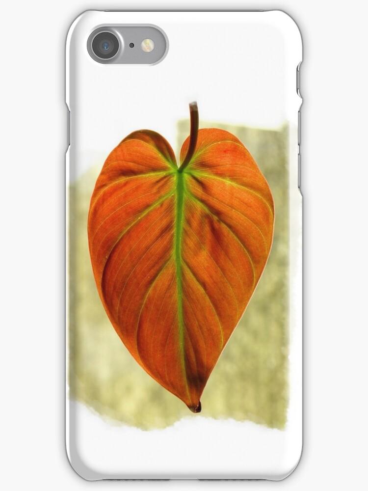 Natural iPhone Case by artisandelimage