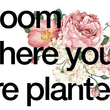 florece donde estes plantado de alexwein