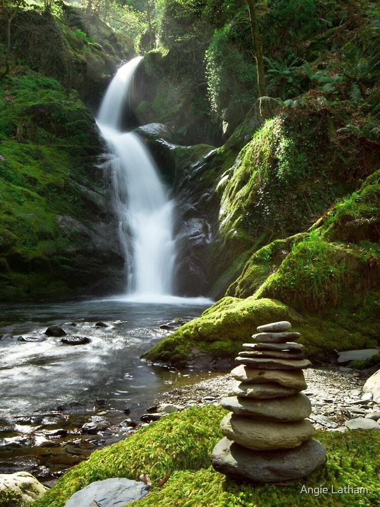 Wales - Dolgoch Falls 2 by AngelaBarnett