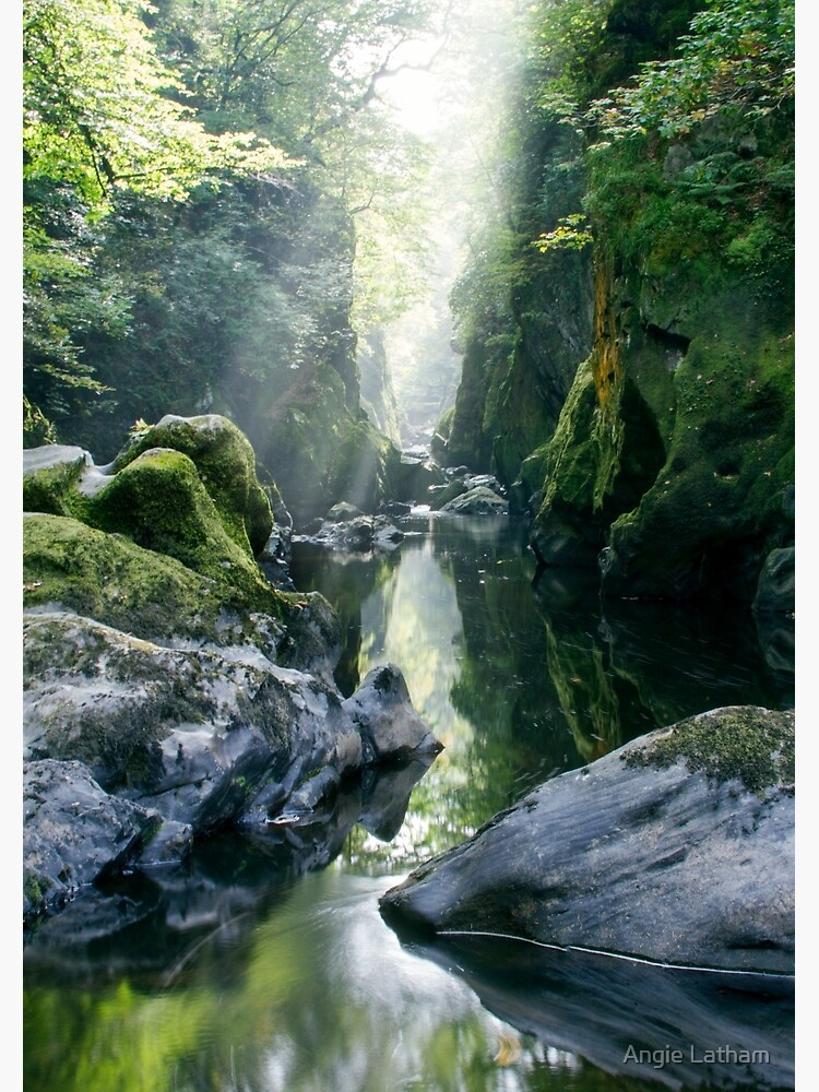 Wales - The Fairy Glen , Betws-y-Coed 2 by AngelaBarnett