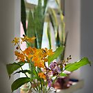 Flowers near the window by jasminewang
