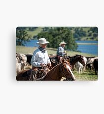 Preparing to herd cattle Canvas Print