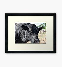 Bull Crappy Framed Print