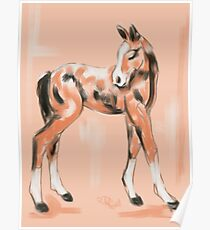 Foal Peach Poster