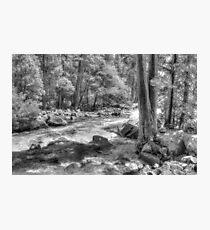 Merced River, Yosemite National Park, CA Photographic Print