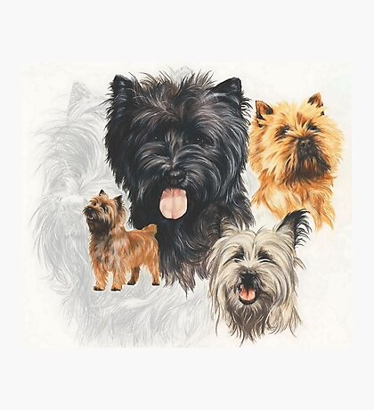 Cairn Terrier /Ghost Photographic Print