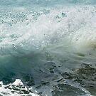 wave #8 by Barbara Burkhardt