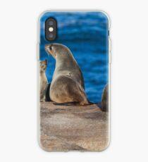 Australische Pelzrobben iPhone-Hülle & Cover
